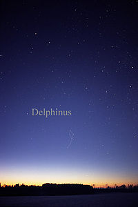 DelphinusCC.jpg