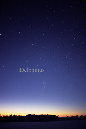 Delphinus - The constellation Delphinus as it can be seen by the naked eye.