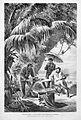 Die Gartenlaube (1875) b 477.jpg