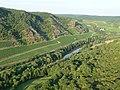 Die Nahe bei Oberhausen - panoramio.jpg