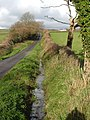 Ditch beside the lane to Wilburton - geograph.org.uk - 286809.jpg