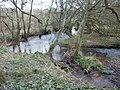 Doniford stream, Stogumber - geograph.org.uk - 1770860.jpg