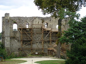 Anjou - Remains of the fortress of Langeais, built by Fulk III
