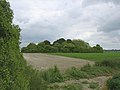 Duck's Nest long barrow, Rockbourne - geograph.org.uk - 25430.jpg