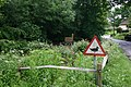 Duck pond - geograph.org.uk - 455179.jpg