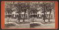 Dwellings, Lockport, N.Y, by F. B. Clench.png