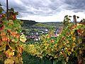 Ebringen im südbadischen Landkreis Breisgau-Hochschwarzwald. Blick vom Schönberg. (I).jpg
