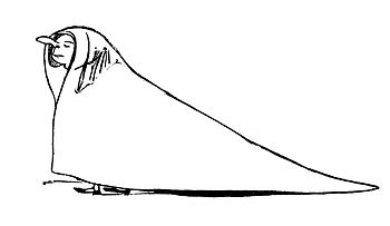 Edward Lear More Nonsense 03.jpg