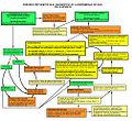 Enfermedad Celíaca - Diagrama errores diagnósticos.DIAGNÓSTICO INFANCIA.2.jpg