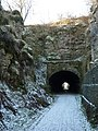 Entering Hopton Tunnel - geograph.org.uk - 1625740.jpg
