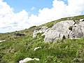 Erratics and rock outcrops at the break of slope - geograph.org.uk - 450738.jpg