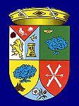 Escudo belvis.JPG