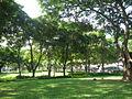 Esplanade Park 4.JPG