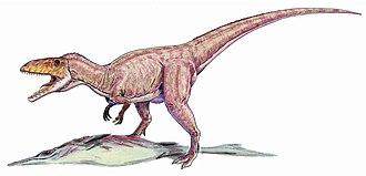 Eustreptospondylus - Eustreptospondylus feeding on an ichthyosaur