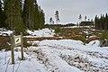 Eventyrskog hogget 14 km folkestier Øverbymarka Mjøsen skog blå rute mann.jpg