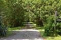 Evergreen east of Hopewell, driveway.jpg
