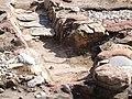 Excavation at Tarbatness - geograph.org.uk - 608395.jpg