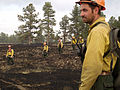 FEMA - 36667 - Firefighters at the Nash Ranch Fire in Colorado.jpg