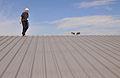 FEMA - 44371 - FEMA PA inspection of a hail damaged roof in OK.jpg