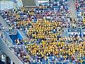 FWC 2018 - Group F - KOR v SWE - Team Sweden fans - 2.jpg