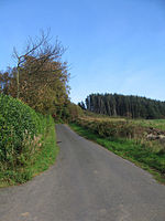 File:Fairlie Moor road - geograph.org.uk - 581752.jpg