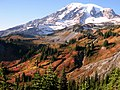 Fall color on the hillside above 4th Crossing with Mt Rainier in background. (4ee83657910f40cd8f9cbb4eca76d844).JPG