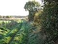 Farm track below the Leftwich estate - geograph.org.uk - 2689699.jpg