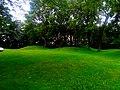Farwell's Point Mound Group - panoramio (2).jpg