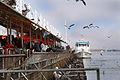Feria Fluvial Valdiviana.JPG