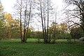Feuchtwiese Heiligen 04.jpg