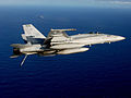 Final approach towards the USS Ronald Reagan DVIDS128061.jpg