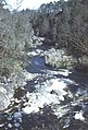 Findhorn Gorge - geograph.org.uk - 13213.jpg