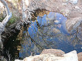 First Creek Canyon water 1.jpg