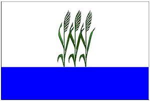 Kamyshin - Image: Flag of Kamyshin