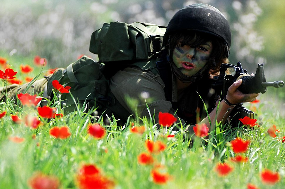 Flickr - Israel Defense Forces - Guns N' Roses, Welcome to the Home Front Jungle