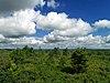 Flickr - Nicholas T - Pine Hill Vista (Revisited) (2).jpg