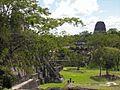 Flickr - archer10 (Dennis) - Guatemala-1612.jpg