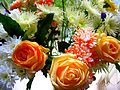 Flickr - ronsaunders47 - RONS BLOOMS 005.jpg
