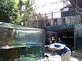 Florida Aquarium.jpg