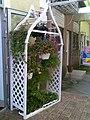 Flower store16052009(001).jpg