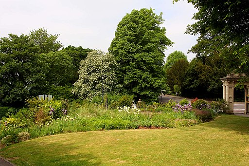 Flowerbed in Royal Victoria Park - geograph.org.uk - 2068144