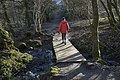 Footbridge on path to Brock Bottom - geograph.org.uk - 1702046.jpg