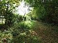 Footpath - geograph.org.uk - 2638179.jpg