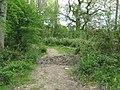 Footpath and bridleway junction east of Park Farm - geograph.org.uk - 1275465.jpg