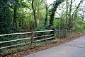 Footpath into the woods near Smart Hill. - geograph.org.uk - 1028544.jpg