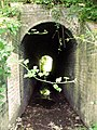 Footpath tunnel - geograph.org.uk - 487939.jpg