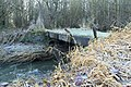 Forgotten footbridge. - geograph.org.uk - 1611076.jpg
