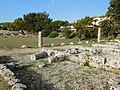 Forum (Paestum) 02.jpg