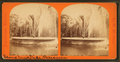 Fountain, Fairmount Park, Philadelphia, from Robert N. Dennis collection of stereoscopic views 2.png