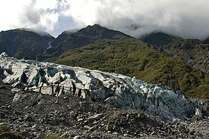 Fox Glacier and rain forest on the west coast ...